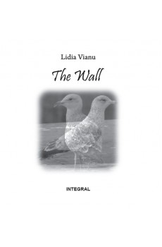 The Wall - Vianu Lidia